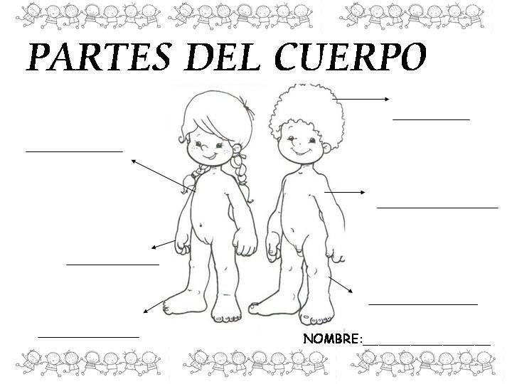 Menta Más Chocolate - RECURSOS PARA EDUCACIÓN INFANTIL: Actividad: LIBRO sobre EL CUERPO HUMANO