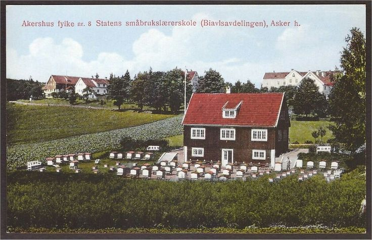 Asker. Statens småbrukslærerskole. Biavlsavd.