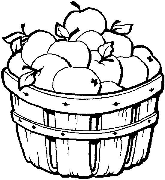 BUSHEL BASKET OF APPLES COLORING PAGE PAGES