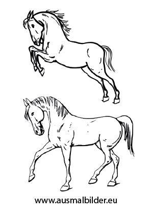 ausmalbild pferde zum ausmalen. #ausmalbilder | #
