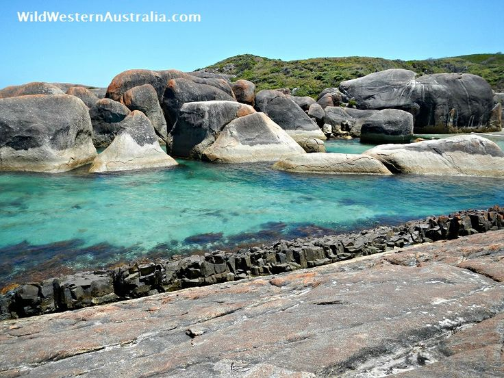 View across Elephant Cove to the Elephant Rocks. Click on the image for more details and photos of this amazing beach on the south coast of Western Australia.