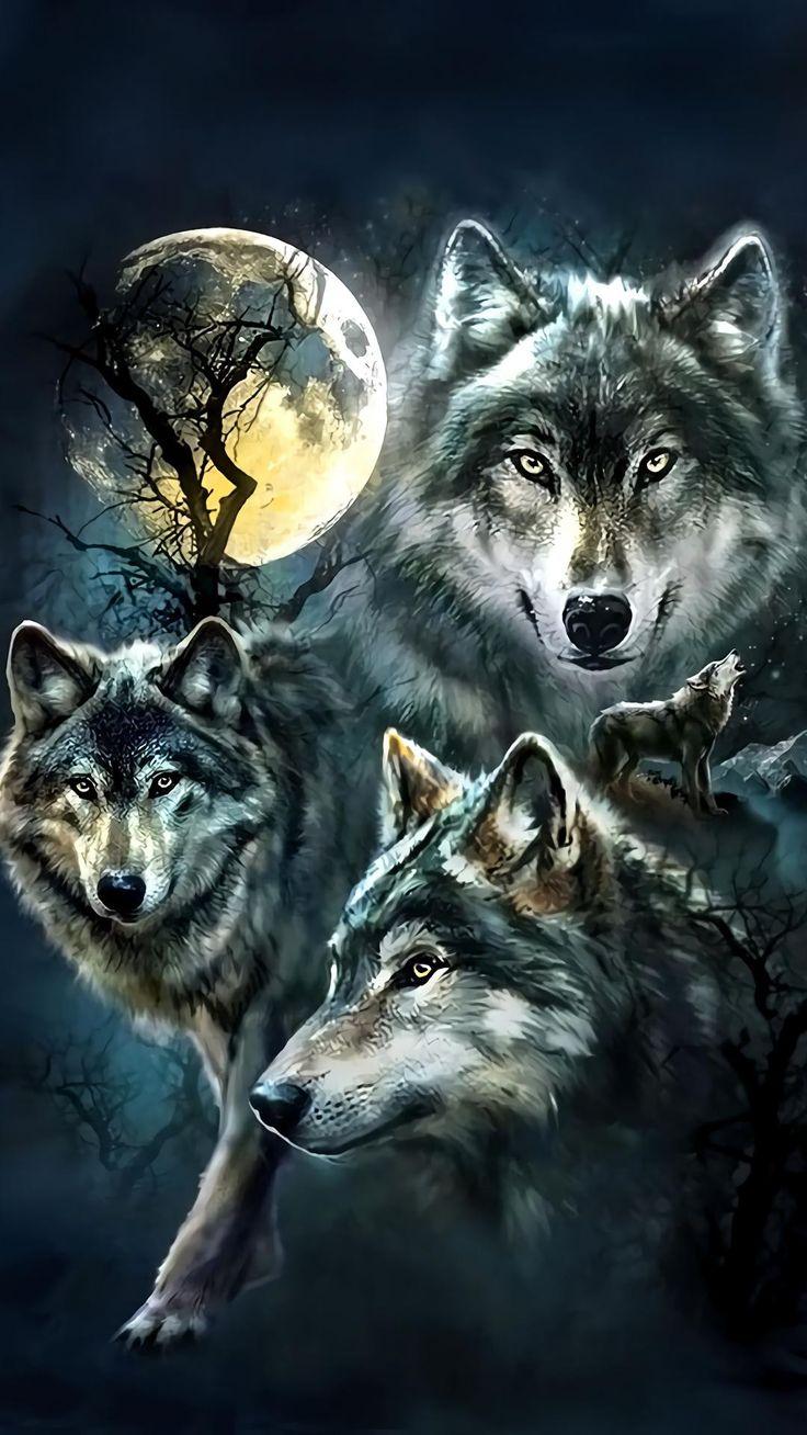 картинки про волков для обоев твердые отходы могут