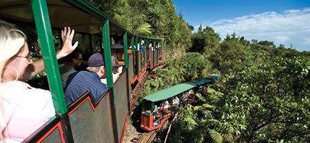 Driving Creek Railway and Potteries   Coromandel Adventures   Coromandel Town Tours & Activities   Coromandel Peninsula.