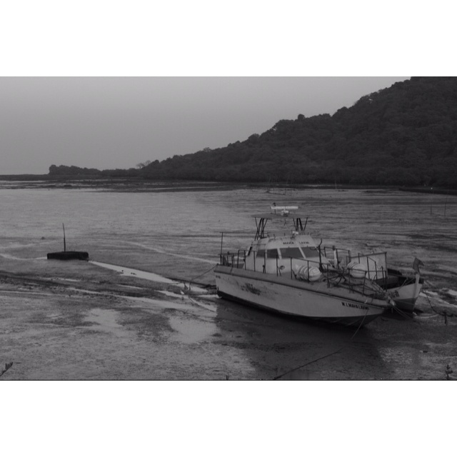 A view at elephanta caves