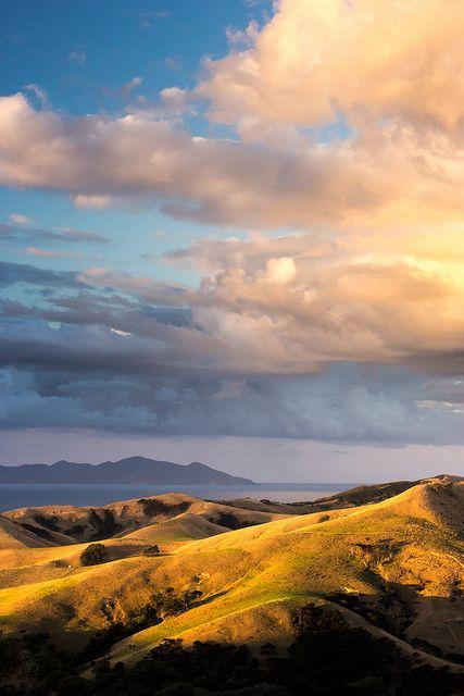 Port Jackson Hills, New Zealand
