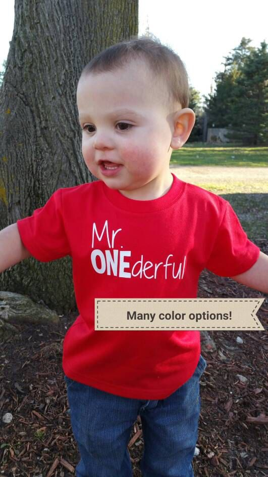 1st BIRTHDAY SHIRT!!  Mr ONEderful!  - 1st Birthday shirt - Front and Back design - name shirt - first birthday - one year old - Mr Wonderful - onederful by HappyBrooke on Etsy  www.happybrooke.com