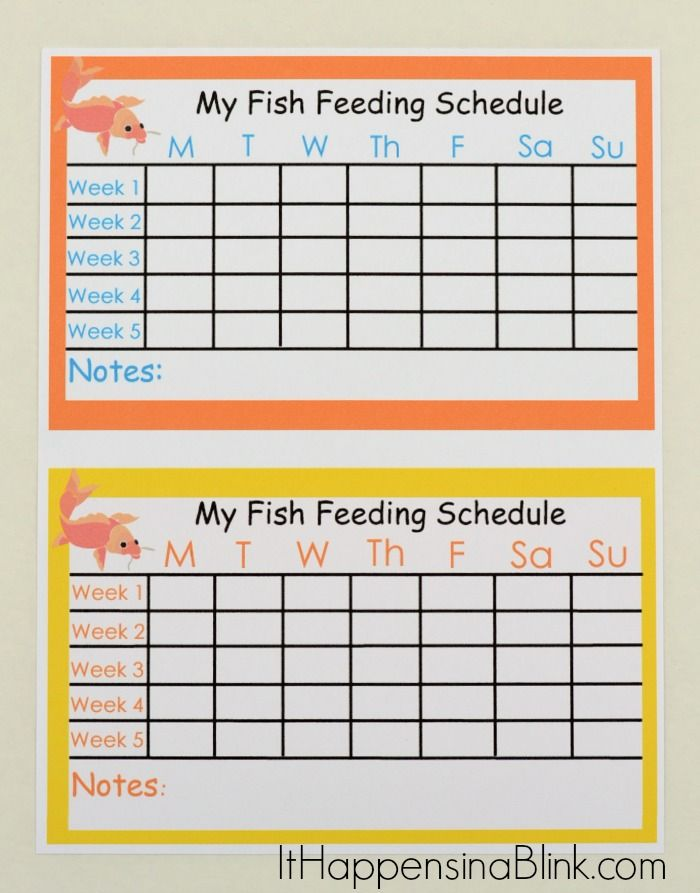 8 best images about ava 39 s fish on pinterest neon for Fish during pregnancy chart