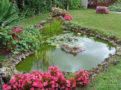 ... De Jardin on Pinterest  Bassin de jardin, Bassin jardin and Paysager