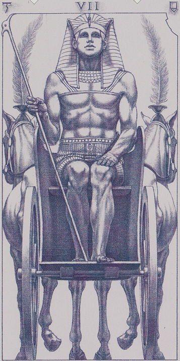 The Chariot - Tarot of the III Millennium