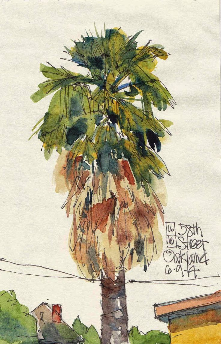 Urban Sketchers S.F. Bay Area: 16 Trees