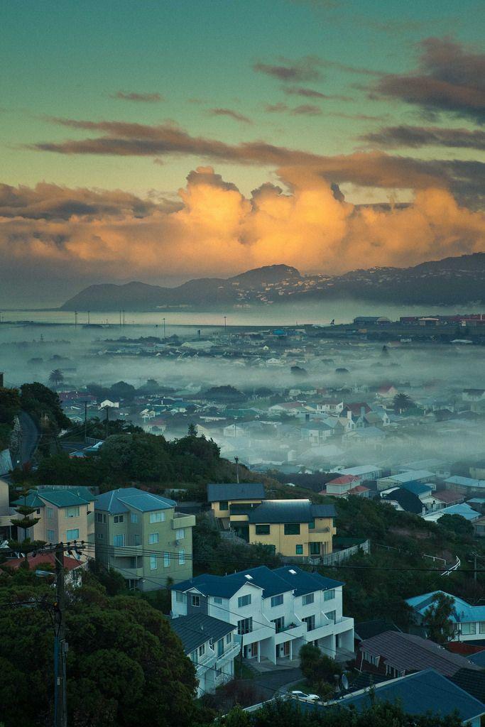 Misty Miramar - Wellington, New Zealand