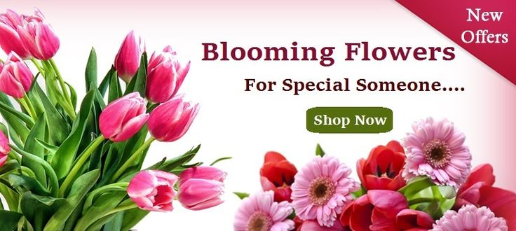EXPRESS LOVE AND HAPPINESS WITH NEW ONLINE FLOWER DELIVERY BANGALORE