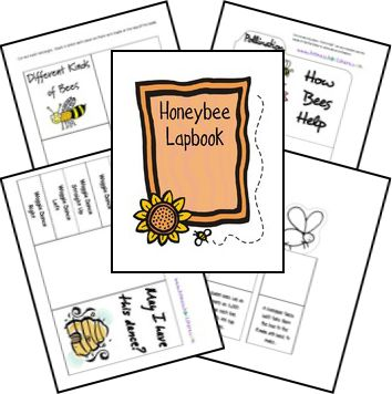 Free Honey Bee Unit Study Lessons and Lapbook Printables; matches The Bee Tree