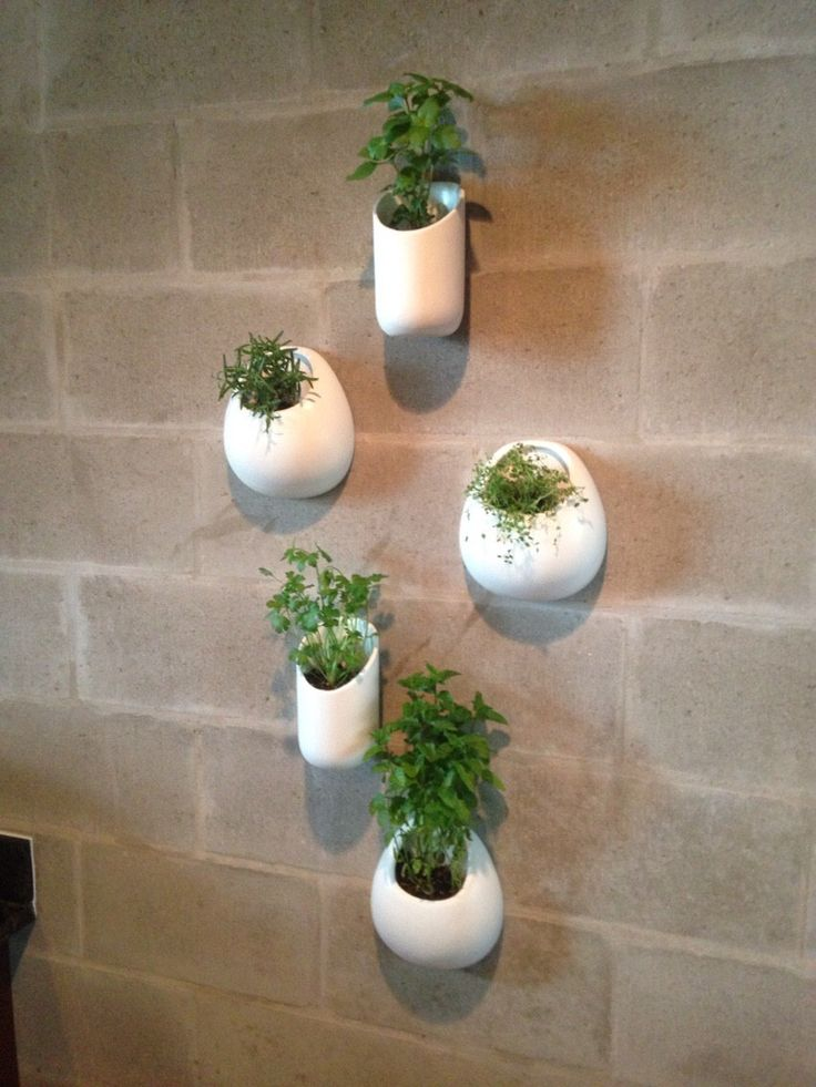 Ceramic Wall Planters Set Five White Wall Pocket Set Hand Painted Herb  Planters Air Plants Modern