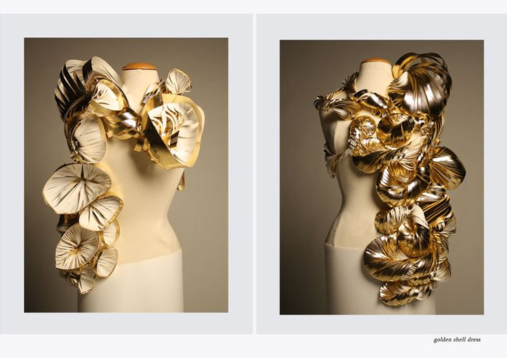 Iris van Daalen | DAe Identity module 4  -2009 Golden shell dress