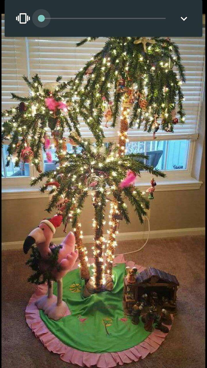 Tropical Christmas tree   Christmas palm tree, Florida ...