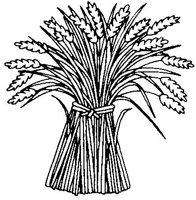 coloring pages on wheat - photo#2