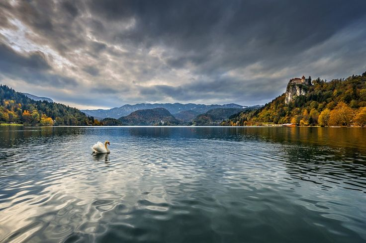 """Photo """"lakeBled"""" by zenit"""