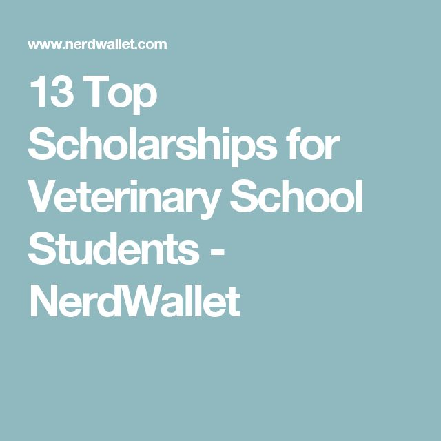 13 top scholarships for veterinary school students