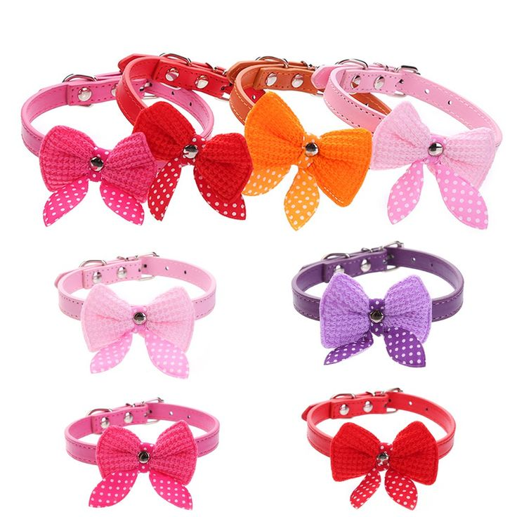 Like and Share if you want this  Bow-knot Adjustable PU Leather Dog Collar Cute Pet  Collars For Small Dogs - 6 Colors    18.00, 9.99  Tag a friend who would love this!     FREE Shipping Worldwide     Get it here ---> https://liveinstyleshop.com/holapet-bow-knot-adjustable-pu-leather-dog-collar-cute-cat-necklace-puppy-pet-dog-collars-for-small-dogs-6-colors/    #shoppingonline #trends #style #instaseller #shop #freeshipping #happyshopping