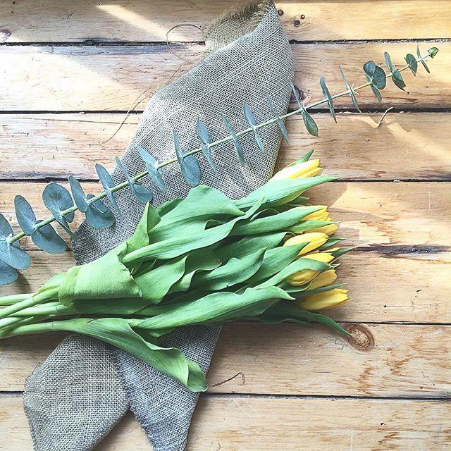 Chaque année, c'est pareil. Dès que le mois d'avril se pointe, qu'il fasse beau ou pas, je cours chez mon fleuriste du coin pour m'acheter quelques tulipes et de l'eucalyptus, afin de me rappeler que l'été s'en vient à grand pas et de ne pas désespérer. Un rayon de soleil se répand doucement dans mon appartement. ☀️ ~ #inspiration #home #love #summer #flowers #creative #instamood #vibes #beautiful #spring #pinterest #style