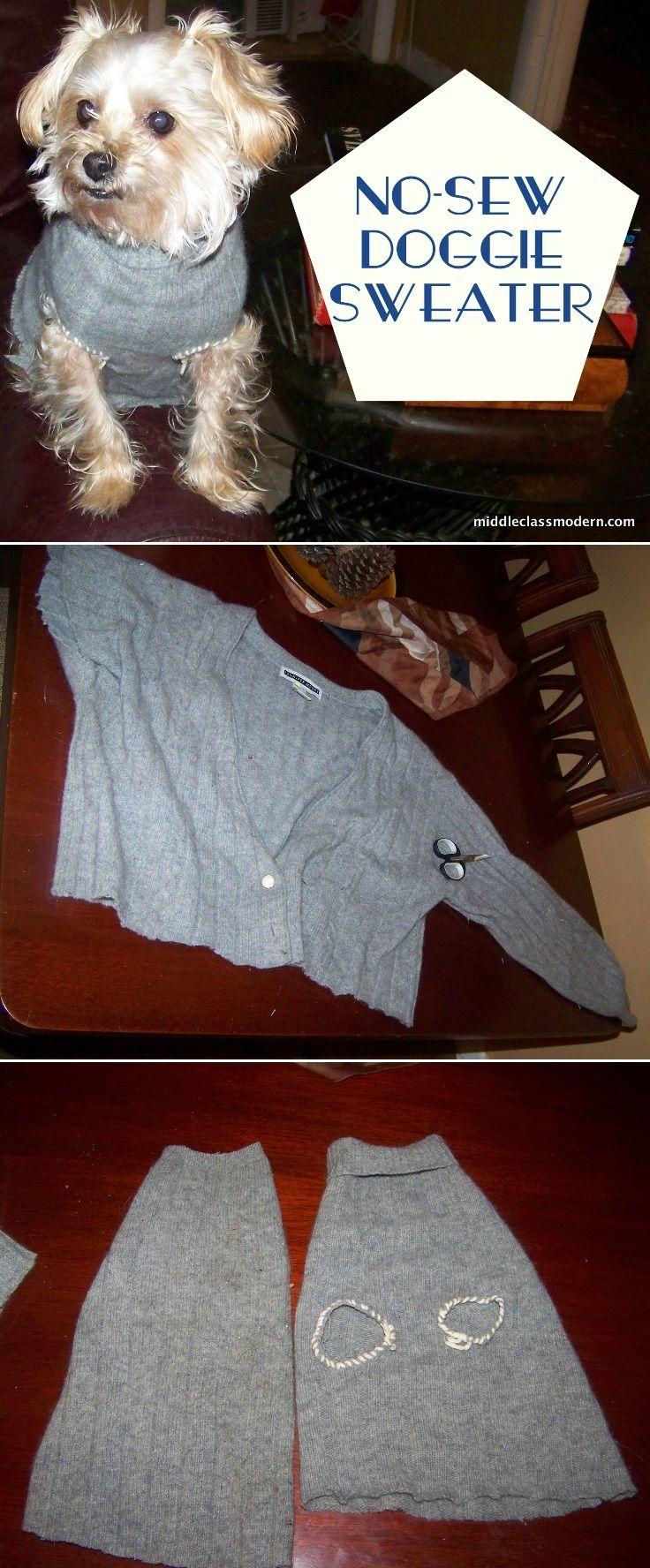 No-Sew Doggie Sweater