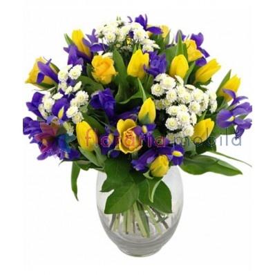 buchet cu irisi si lalele, florarie online, flori iftine, florarie bucuresti