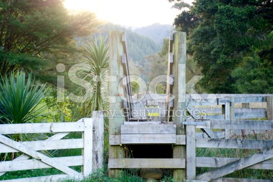 Rural New Zealand at Dusk royalty-free stock photo