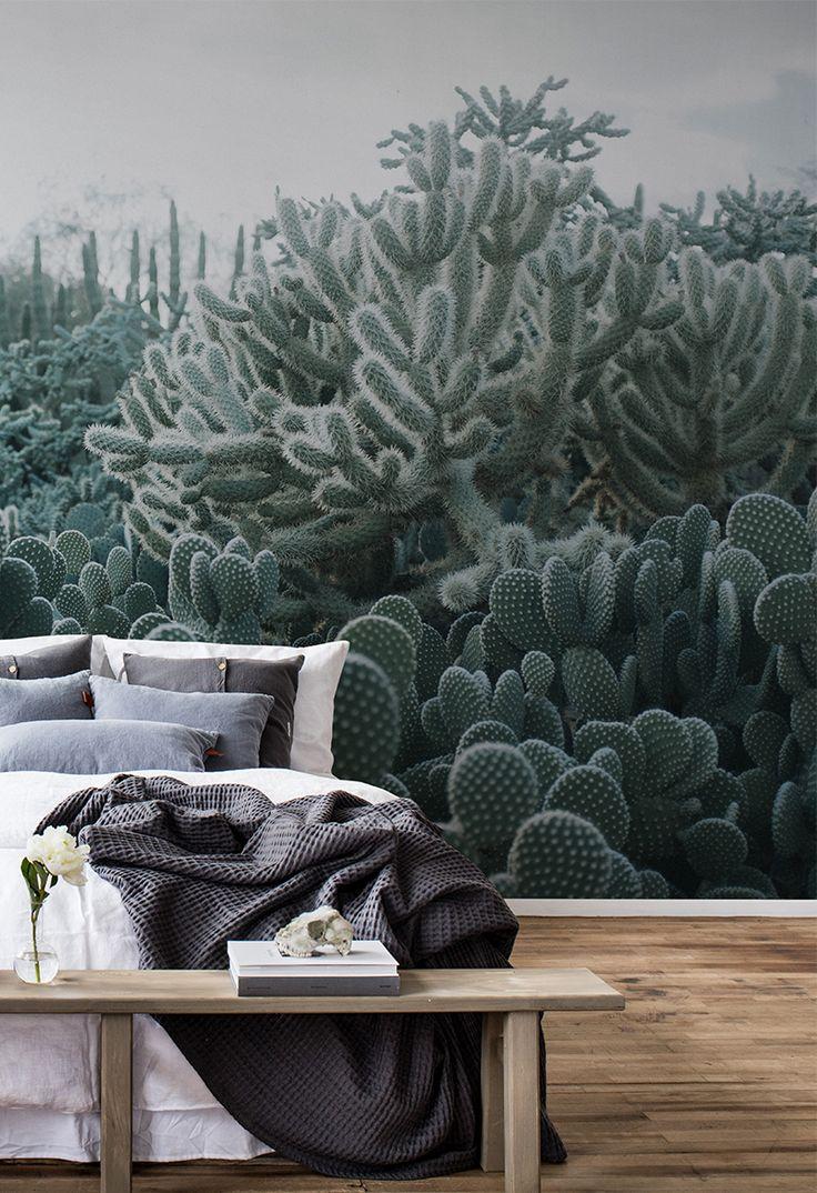 cacti in 2019 tapetenkollektion palette tapeten. Black Bedroom Furniture Sets. Home Design Ideas