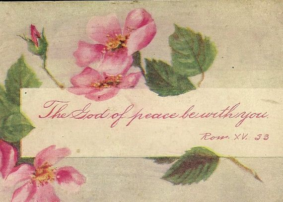 Antique UDB Scripture Postcard Pink Roses and Quote from