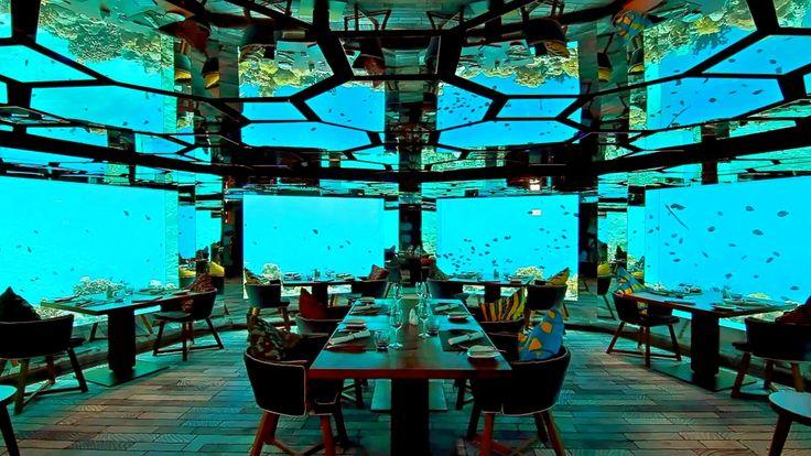 http://travelcentremaldives.com/maldives-blog/sea-worlds-leading-underwater-hotel-restaurant  SEA – World's Leading Underwater Hotel Restaurant
