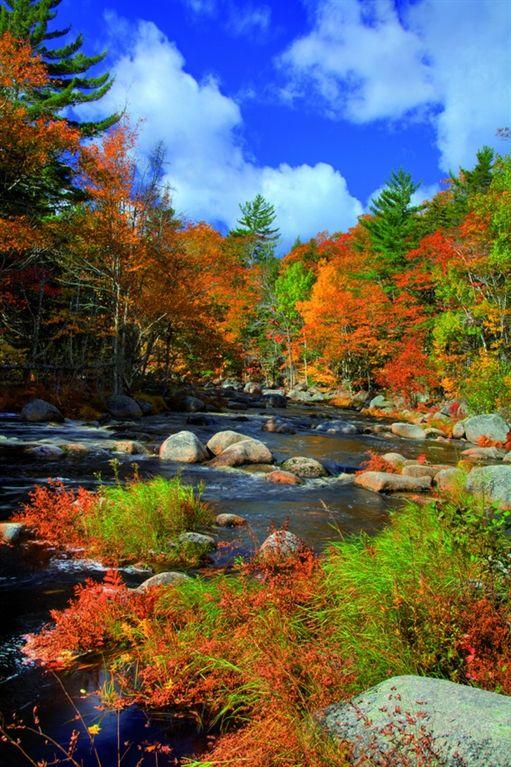 NC State Alumni Association - Canada and New England Fall Foliage
