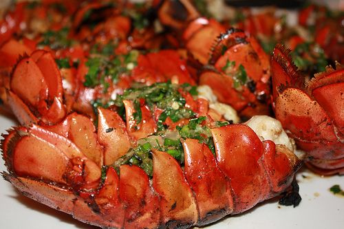 Grilled lobster with chili herb butter | Food/cooking | Pinterest