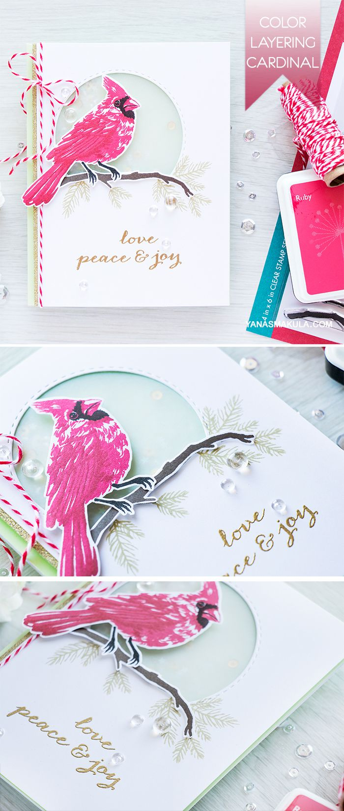 34 Best Cards Vellum Images On Pinterest Cardmaking Cards And