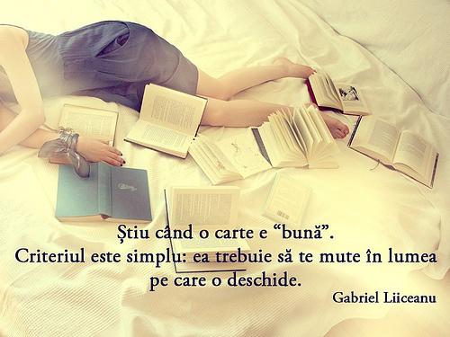 """Știu când o carte e """"bună"""". Criteriul este simplu: ea trebuie să te mute în lumea pe care o deschide. - Gabriel Liiceanu"""