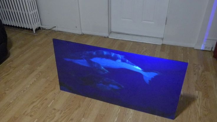 MORE AFFORDABLE THEN A OLED TV THE FIRST OLED TV LIKE PROJECTION SCREEN ...