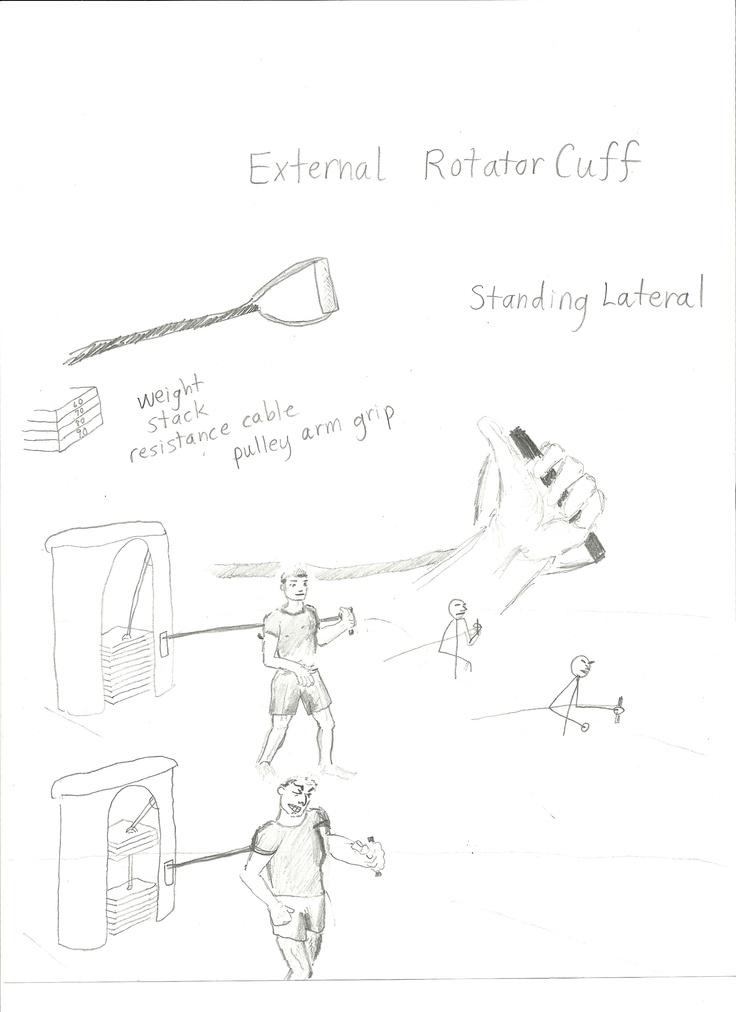 external rotator cuff ...