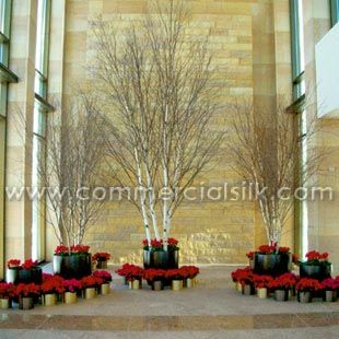 Artificial Birch Trees In Unique Holiday Display | Birch ...