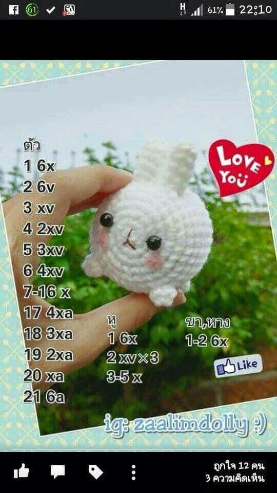กระต่ายขาว