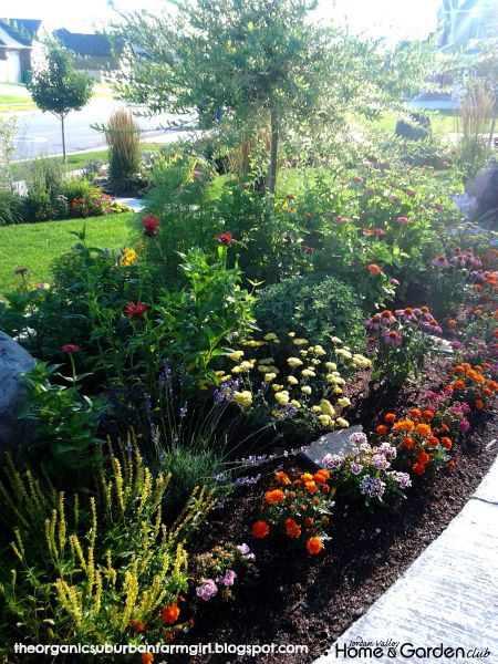 Gardening in Utah - arrow, marigolds, lavender, bee balm, echinacea, chamomille, calendula, cosmos, chrysanthemums, dill, thyme, borage and zinnias. You can plant these perennials and annuals anywhere and everywhere!