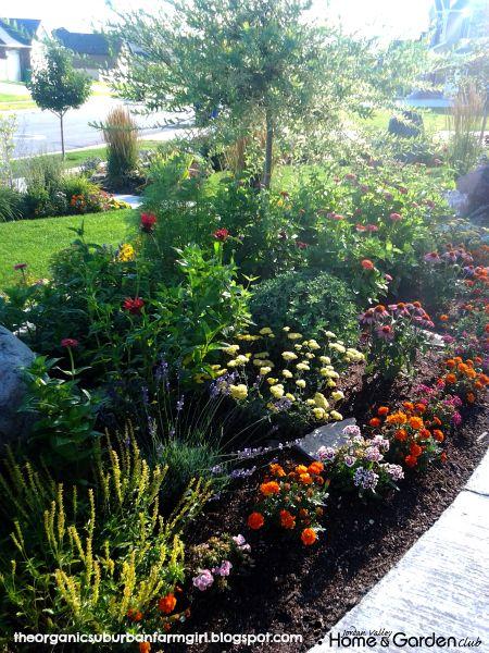Gardening In Utah Arrow Marigolds Lavender Bee Balm 400 x 300