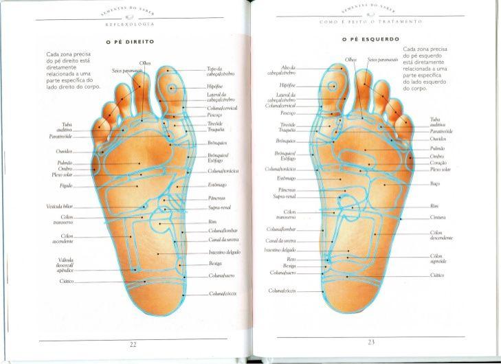 Reflexologia guia prático