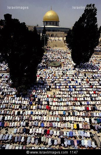 Moslems Pray On Ramadan In The Courtyard Of The Dome Of The Rock On Temple Mount In Jerusalem