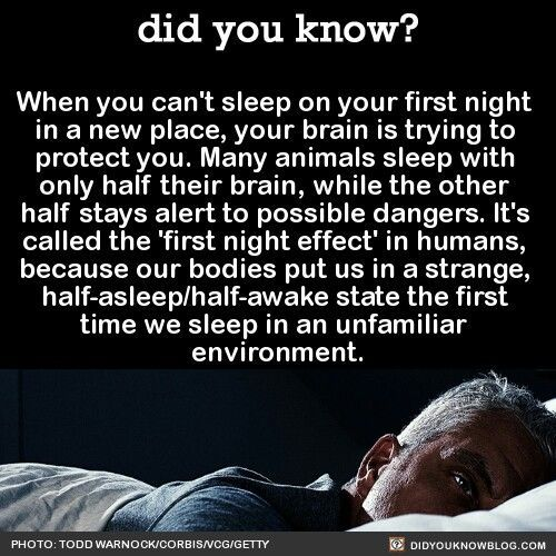 Now I know why I can never sleep the first night in a strange bed!