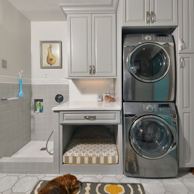 1000+ Ideas About Dog Shower On Pinterest