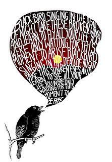 Blackbird   by alvarejo®