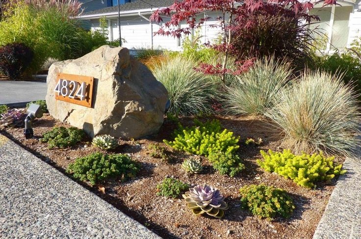succulents and boulder with address, front yard ideas