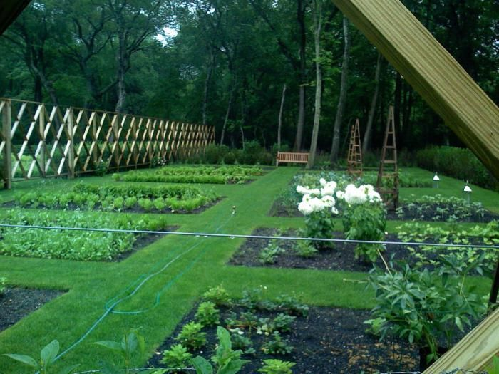 This is the most amazing deer fence I've ever seen - and great inspiration for a vertical screen or trellis!