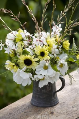 627 Best Dried Flowers And Floral Arrangements Images On