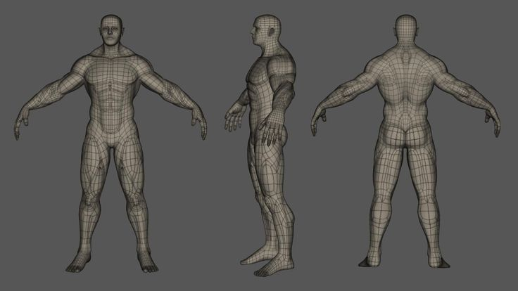 male topology reference - Google Search